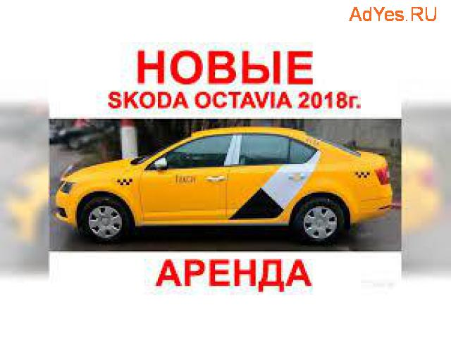 Водитель такси аренда Шкода Октавия 2018