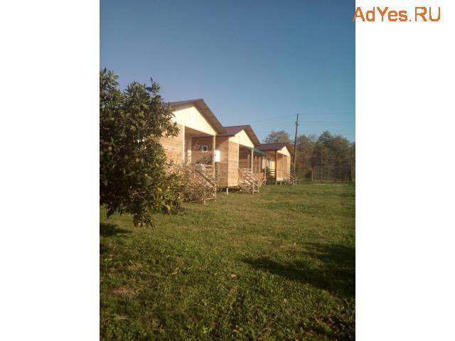 Сероводородный источник, Абхазия, Домики в аренду