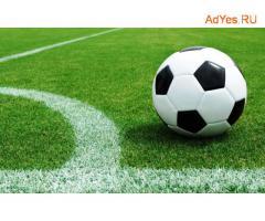 Строительство футбольных полей в СПб и ЛО – «STSEO»